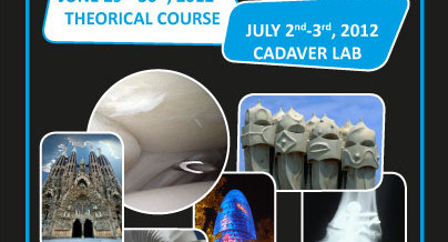 GRECMIP : 4th International course of Foot & Ankle Mini-invasive Surgery